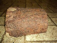 New listing Reptile Wood Log Cave Hide Away