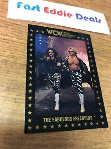 1991 WCW WRESTLING THE FABULOUS FREEBIRDS CARD 5 CHAMPIONSHIP MARKETING NWA