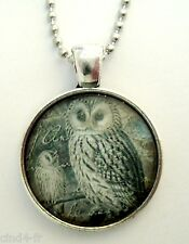 Médaillon Vintage retro +Chaine collier /Medallion + Chain necklace- Owl / Hibou