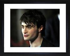 Daniel Radcliff Framed Photo CP1621