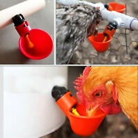 20pcs Automatic Chicken Drinker Cups Plastic Poultry Waterer Water Drinking Hot