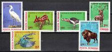 Romania 1980 MNH 6v, Birds, Stork, Animals, Deer  (D3n)