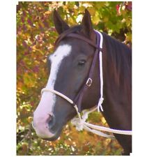 Deluxe Bitless Bridle for Horses Silver Black and White Nickel plated rings