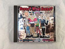 Scene? What Scene? A Texas Compilation - Pinche Flojo Records
