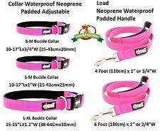 Dexil Lifetime Guarantee Elite Range Luxury Neoprene Padded Extra Strong Pet Dog