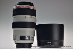 Canon EF 70-300mm f/4-5.6L IS USM Excellent