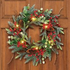 LED Lighted Festive Evergreen Winter Pinecone Christmas Welcome Door Wreath