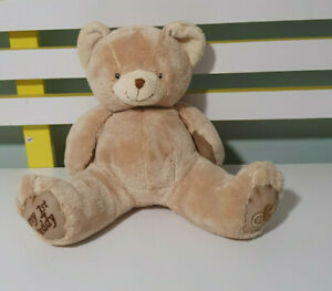 MY 1ST TEDDY BEAR ANIMAL ALLEY BABY TOYS R US DUMMY PACIFIER ON FOOT 23CM