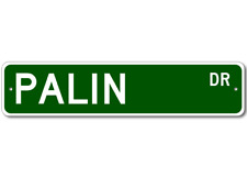 PALIN Street Sign - Personalized Last Name Signs