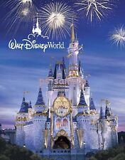 Florida - Walt Disney World - DISNEY CINDERELLA CASTLE - night - Fridge Magnet
