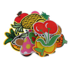 18pcs Fruit Embroidery Applique Sew Iron On Patch Badge Clothes Applique Bag