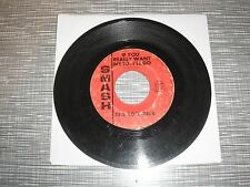 THE RON-DELS / If You Really Want Me To, I'll Go - Walk About  / 45 rpm Vinyl