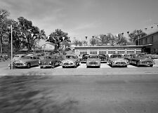 1950s Cadillac Oldsmobile dealer used car lot 8 x 10 Photograph