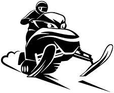 Snowmobile Evolution 6.5 VinylSticker SkiDoo Ski Doo Yamaha Arctic Cat