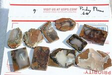 SLABS - Rare Priday Plume Agate Thunderegg Slices - Ready to Cab and Polish! 013