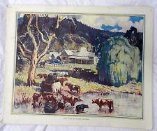 Vintage Schools Poster - Dairy Cows in Victoria, Australia -  c 1920s / 1930s