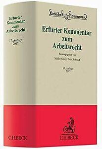 Erfurter Kommentar zum Arbeitsrecht (Beck'sche Kurz-Komm... | Buch | Zustand gut