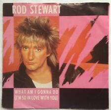 "Rod Stewart - What Am I Gonna Do - Warner Brothers Picture Sleeve 7"" Single VG+"