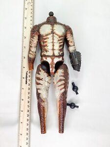 1//6 Scale Toy Predator-Marron Taille Armor