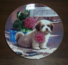 Weekend Gardener - Shih Tzu ? Puppy Playtime Plate Collection 1987 Jim Lamb