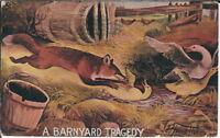 BB-093 A Barnyard Tragedy Northwestern Hide Fur Advertising Postcard 1907-1915