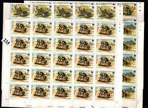 // 50X SOMALIA 1992 - MNH - WWF - ANIMALS - SHEETS BENT