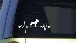 "Frenchie heartbeat lifeline *I215* 8"" wide Sticker decal french bulldog"