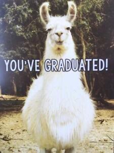 """You've Graduated - Here's Your Dipllama!"" RPG Funny Llama GRADUATION CARD"