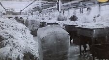 Sorting Wool, Magic Lantern Glass Slide, From a Photograph