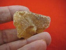 (k-3514) 15 g Rare Kauri tree Gum copal young Amber New Zealand Tane Mahuta