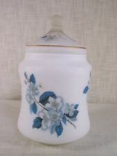 Vintage Frosted Glass Apothecary Jar Canister Blue Floral Made in Italy