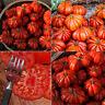 PM_ 50 Pcs Hot Rare Sweet Tomato Fruit Vegetable Seeds Home Garden Plant Decor