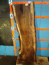 "#9126   1/1/8"" THICK  black walnut live edge slab"