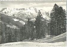 ABETONE m.1400 (PISTOIA) 1958