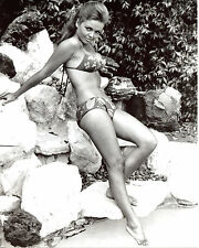 Deanna Lund Leggy in Bikini 8x10 photo S6719
