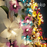 20 LED Battery or Plug Frangipani Flower FAIRY STRING LIGHTS PARTY PATIO WEDDING