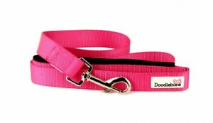 Doodlebone Bold Dog Lead with Padded Handle - Bright, Durable, Dogs, Puppies