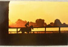Saratoga NY Race Track morning workout vintage postcard
