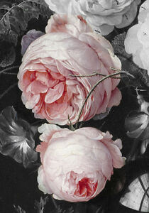 18th Century Painting Pink Roses French Provincial Shabby Chic Canvas Print A4