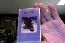 Mr. Big- self titled- Korean import cassette- sealed