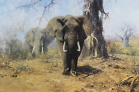 Home Art Wall Decor African Elephant Oil Painting Picture Printed on Canvas