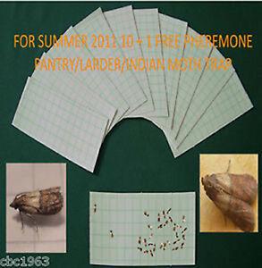 KRITTERKILL PANTRY/LARDER MOTH PHEROMONE TRAP REFILLS x 10 - 550,000 SOLD
