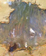 Priday Moss Agate Thunderegg Slab Lapidary Cabbing Rough