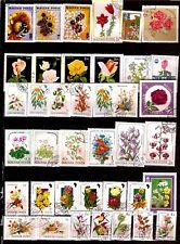 HONGRIE les fleurs : roses,fleurs des champs et d'ornement G242