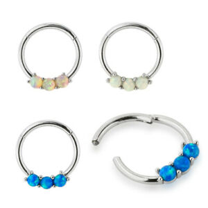 Hinged Segment Ring Opal Daith Earrings Helix Hoop Septum Clicker