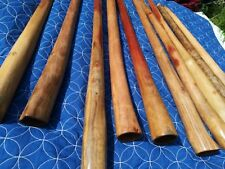 didgeridoo club and lessons.