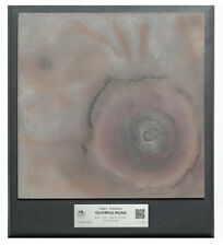 "Mars Olympus Mons 3D Space Terrain Topographical 12.5"" Model from NASA Data"