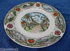"""Florida ceramic plate 10 1/4"""" Dia"""