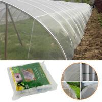 Jardin Cultures Plantes Protection Filet Maille Oiseaux Insecte Animal Légumes