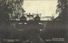Hotel Dalen Dalen Telemarken Norge Norway c1910 Real Photo Postcard